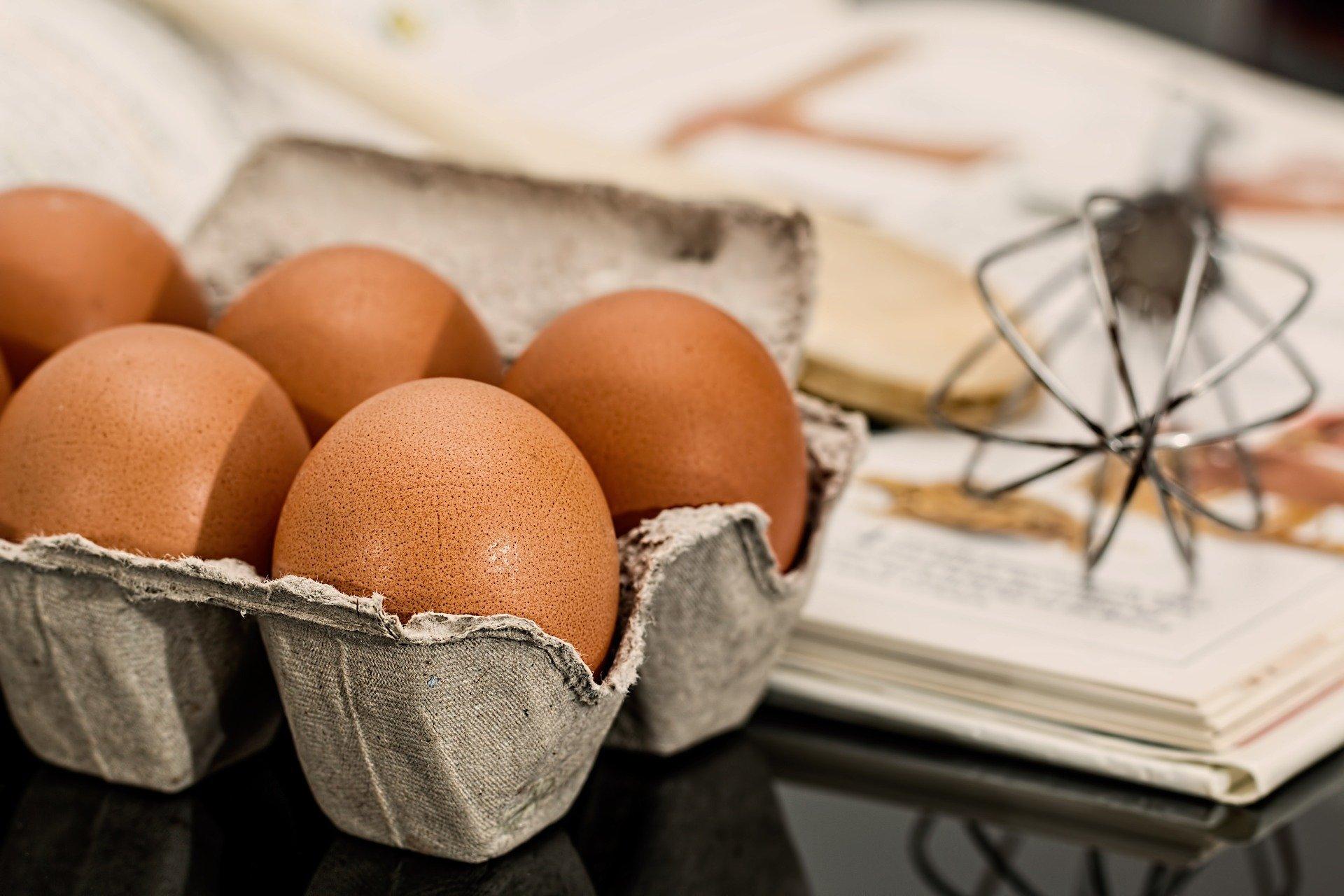 CORBUSE Libros sobre la gastronomía para principiantes