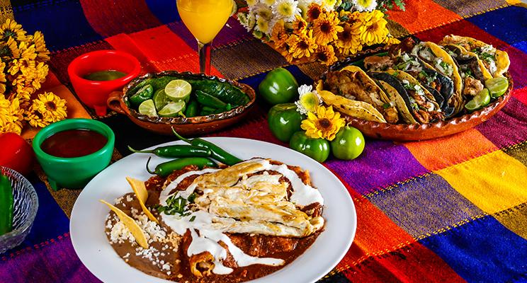 Carrera de gastronomía: Experto en cocina mexicana